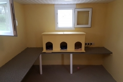 cornwall_cattery_3