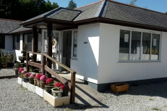cornwall_cattery-2